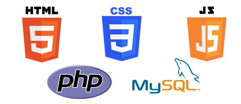 Web Development Company in Raipur